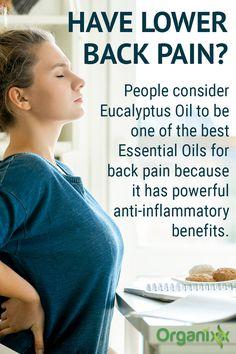 Oil For Headache, Headache Relief, Back Pain Relief, Stress Relief, Essential Oils For Headaches, Best Essential Oils, Sciatic Pain, Sciatica, Chiropractic Treatment