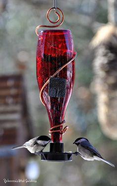 A bottle of red...  Bird feeder.  Be sure to click through to her blog post as she has linked to her tutorial DIY glass bottle bird feeders (shows how to wrap the copper on the bottle).