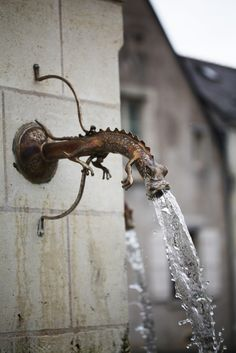 Lizard Water Fountain, in germany a beautiful church had dog bat things that where the gutter spouts. Water Spout, Water Faucet, Design Exterior, Interior Design, Water Garden, Garden Hose, Taps, Water Features, Garden Art