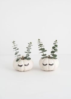 DIY Cute Faced Mini Pumpkins Tutorial