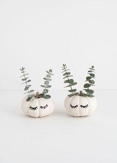DIY Cute Faced Mini Pumpkins Tutorial