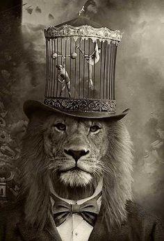 Ringmaster with lion head wearing caged mini circus hat! Dark Circus, Circus Art, Arte Steampunk, Night Circus, Desenho Tattoo, Vintage Circus, Surreal Art, Belle Photo, Cat Art