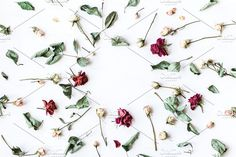 Flowers Flat lay collection curated by Flaffy on Creative Market.