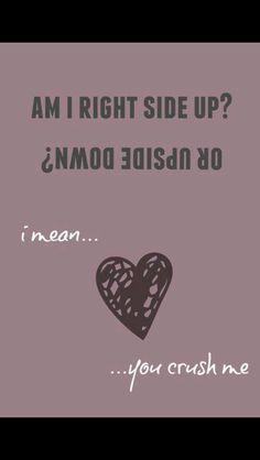 Dave Matthews Band Crush Lyrics Digital Art by greystreetprints Play That Funky Music, I Love Music, Music Is Life, Good Music, Lyric Quotes, Me Quotes, Crush Lyrics, Beautiful Lyrics, Dave Matthews Band