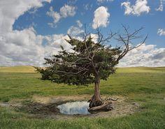 """""""Dirt Meridian"""" di Andrew Moore, un  viaggio fotografico lungo la linea dei sogni interrotti che divide l'America in due (FOTO)"""