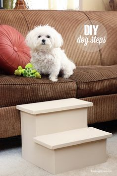 With Felix's torn ACL on the mend, we're looking for ways to keep him from hurting himself all over again. These DIY Dog Steps might be just the thing.