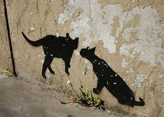 The photograph was taken in the are of Belleville, known for street art scene in Paris. Graffiti of Mosko