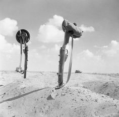 """uss-edsall: """"The graves of two Scottish soldiers are marked by upturned rifles in the sand, North Africa, 5 November © IWM (E """" Afrika Corps, North African Campaign, Nobel Prize In Literature, Man Of War, British Army, 303 British, The 5th Of November, Military History, World War Two"""
