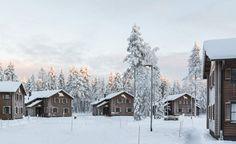 gulo-gulo-villas_ Ranua Finland