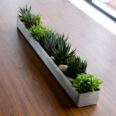 A stainless steel trough by Gus Modern. Use as an industrial planter or candle holder. The trough is welded and polished with a brushed finish, is watertight, and can be used indoors or out. Measures