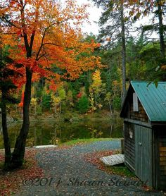 October, Canada, French, Facebook, House Styles, Plants, Photos, Photography, Beauty