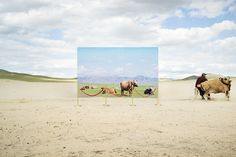 Korean photographer Daesung Lee's remarkable series Futuristic Archaeology explores what the desertification of their home means for Mongolian nomads through a series of fantastically staged images. They feature landscapes-within-landscapes — barren, desert environments inlaid with decidedly greener ones. These incredible scenes aren't digitally orchestrated: Lee actually printed out billboard-sized photographs and strung them up on site, using former nomads as models. Inside the smaller…