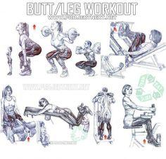 Butt Leg Workout - Healthy Fitness Exercises Gym Squat Press