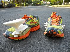 Anything can be used to grow mushrooms in with the 100th Monkey mushroom garden kit. Even an old pair of running shoes!