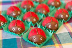 """Amber Thomas----Some really cute food ideas for a """"garden"""" party, could also be used for picnic, BBQ, bug themes Ladybug Snacks, Ladybug Picnic, Ladybug Party, Picnic Birthday, Birthday Treats, Party Treats, Cute Snacks, Cute Food, Edible Food"""