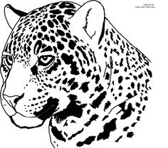 Leopard Face Coloring PageFacePrintable Coloring Pages Free Download
