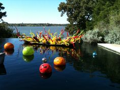 Dale Chihuly at Dallas arboretum! One of my favorites!