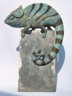 clay chameleon@chas