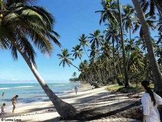 Praia dos Carneiros-#Tamandare, Pernambuco, Brazil