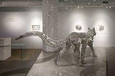 Gallery Wendi Norris | Tomoko Konoike - Earthshine