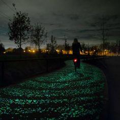 Daan Roosegaarde's glowing Van Gogh  cycle path to open in the Netherlands