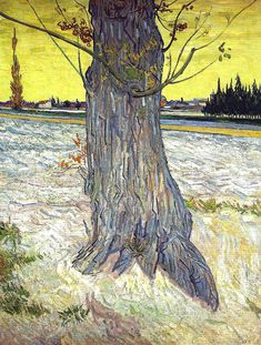 Vincent Van Gogh — Trunk of an Old Yew Tree, Painting: Oil on canvas. Created in Arles, Bouches-du-Rhône. See also: Van Gogh's Woods and Undergrowth of the previous year Rembrandt, Dutch Artists, Famous Artists, Great Artists, Vincent Van Gogh, Art Van, Desenhos Van Gogh, Van Gogh Arte, Van Gogh Pinturas