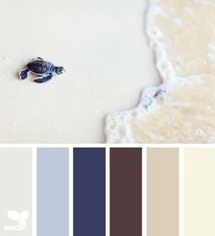 turtle tones @ Design Seeds - a great place to find fab color combos - many uses, not just for painting walls - use for ideas for quilts, art journaling etc