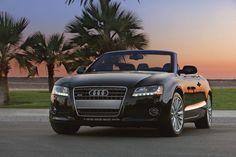 Audi and sunset