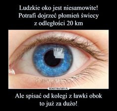 Demotywatory.pl Funny Mems, Best Memes, Everything, Haha, Funny Pictures, Hilarious, Jokes, Facts, Humor