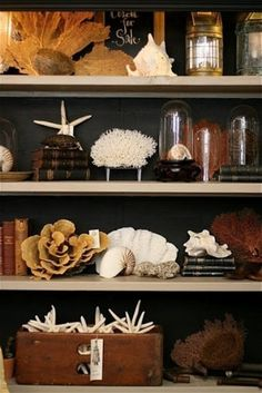 coastal bookcase styling