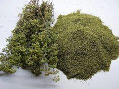 Beauty Secrets, Herbs, Food, Healthy Herbs, Athens, Health, Essen, Herb, Meals