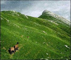 Post de El Blog de la Informática 10 en el que se explica cómo agregar copos de nieve a una fotografía de un paisaje utilizando Photoshop.