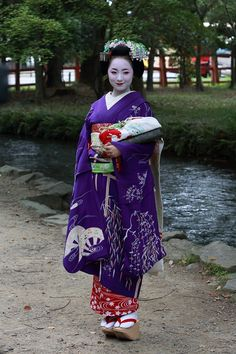 "geisha-kai: "" May 2014: maiko Mikako in purple willow kimono by Nakayoshi4141- blog """