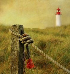 In the distance, the List-West Lighthouse, Sylt Island, Germany ~ by hannes cmarits, via 500px