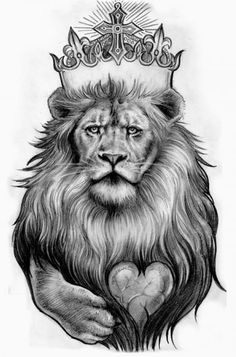 Half Lion Half Tiger Drawing
