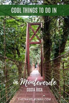Epic things to do in Monteverde, Costa Rica. Hiking the cloud forest, wildlife spotting, zip lining and horse riding. What to see and do in Monteverde, Santa Elena, Costa Rica #monteverde #costarica #adventure #cloudforest