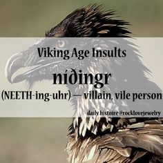 Viking Age Insults: Vile