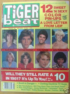 tiger beat magazine 1980s | Woman Saddened That Tiger Beat Still Published