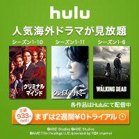 「hulu 広告」の画像検索結果