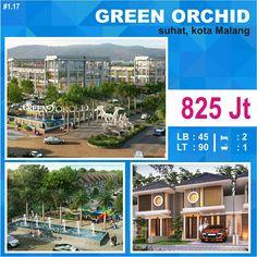 Green Orchid di suhat kota Malang  #rumahmalang_kota