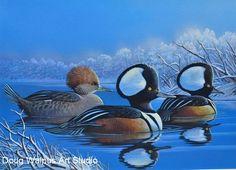 Wood Duck Art Pint 11 x 14 by Doug Walpus Birds Pond Signed Wall Decor