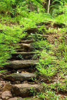 Stone walkway winding in garden Garden Paths, Walkway Garden, Large Backyard Landscaping, Garden Stairs, Long Way Home, Stone Walkway, Stairway To Heaven, Yard Art, Pathways