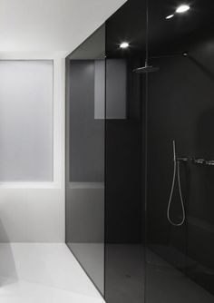 I dare you to have it !!!!   Grey glass shower stall....