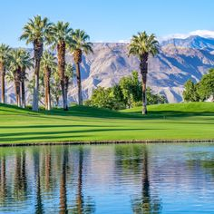 How To Spend A Fantastic Day In Palm Springs From its healing mineral waters to its world-renowned golf courses and numerous interesting museums, the greater Palm Springs area won't disappoint. Palm Springs Tram, Palm Springs Resorts, Springs Resort And Spa, Palm Desert California, Palm Springs California, Palm Springs Real Estate, Desert Location, Coachella Valley, Joshua Tree National Park