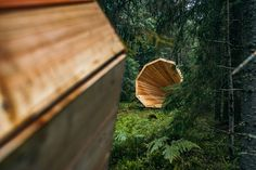 estonian-forest-megaphones-wood-sound-installation-20