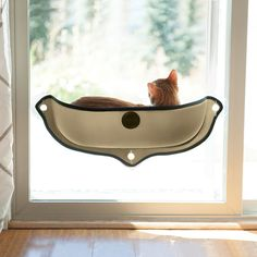EZ Mount Window Bed Kitty Sill Instantly turn any window into a kitty entertainment center! This ingenious EZ Mount Window Bed Kitty Sill attaches to virtually Crazy Cat Lady, Crazy Cats, Cool Cats, Cat Window Perch, Cat Window Hammock, Window Hanging, Window Glass, Window Wall, Gato Animal