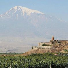 """Armenia's Khor Virap monastery and some vineyards with Mount Ararat looming behind them. Ararat said to be where Noah's ark landed is a holy place to Armenians and a huge part of their history. However it's now inside Turkish territory."" This #regram"