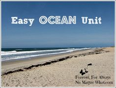 Learn the Oceans | Ocean Unit | Pinterest | Ocean, Continents and Maps