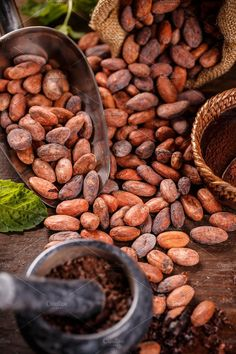 beans Cocoa beans and mortar with pestle on wooden background Café Chocolate, Chocolate Dreams, Fruit Recipes, Mexican Food Recipes, Cacao Fruit, Cocoa Drink, Organic Snacks, Meat Shop, Coffee Farm