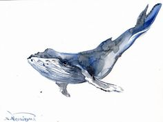 Humpback Whale, Original watercolor painting, 9 X 12 in, sea animals, marine…
